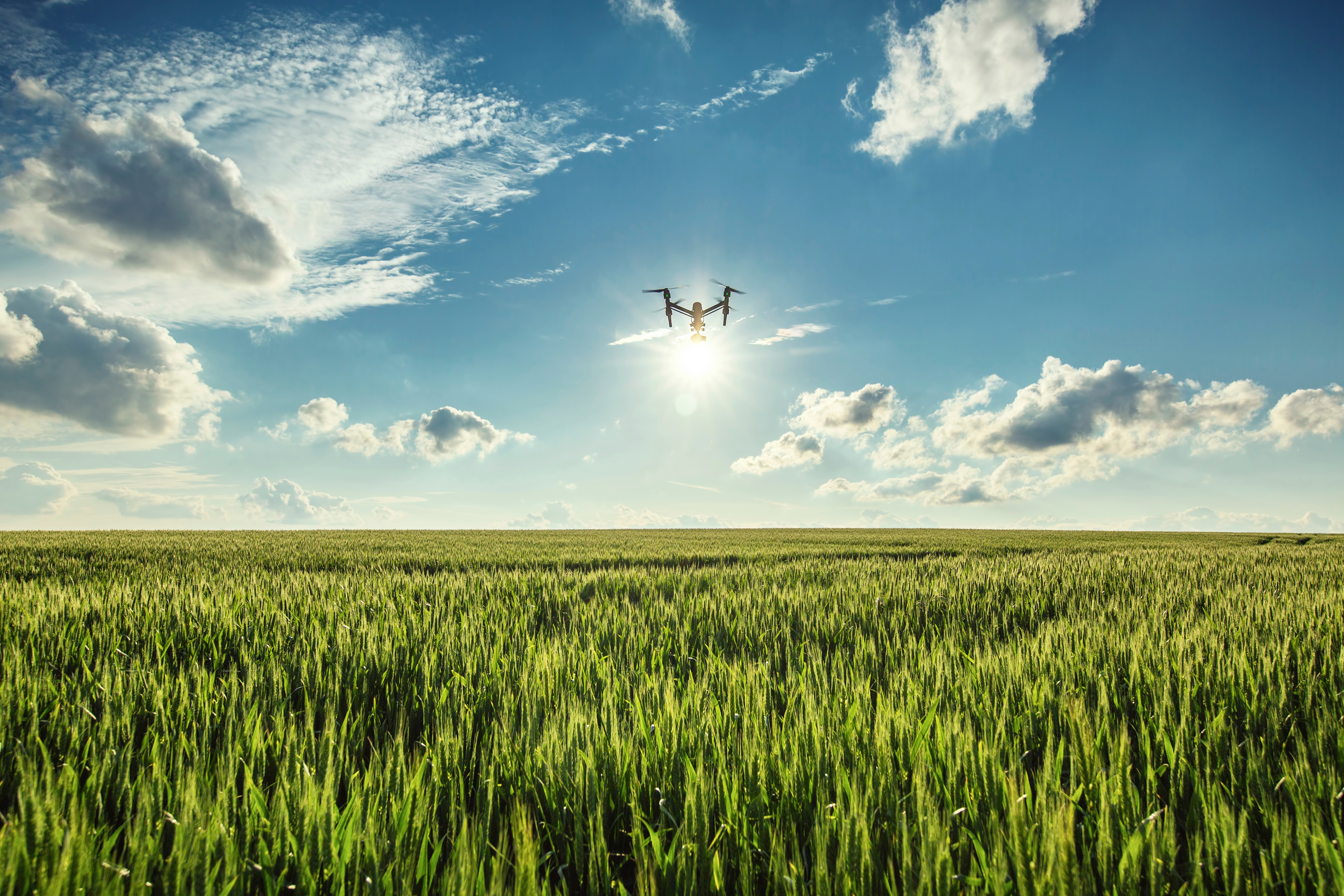 Farm to sky to table precision agriculture flies high with drone farm to sky to table precision agriculture flies high with drone technology sciox Images